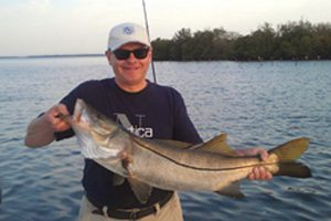 The flats of lemon bay produce trophy size common snook